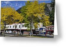 Juneau In The Fall Greeting Card by Cathy Mahnke