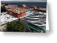 Jungle Roofs Greeting Card by John Rizzuto