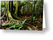 Jungle Trunks2 Greeting Card by Les Cunliffe