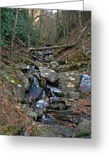Just A Creek Greeting Card by Skip Willits