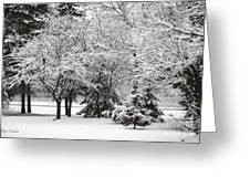 Just After A Snowfall Greeting Card by Mary Machare