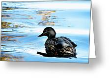 Just Ducky Greeting Card by Colleen Kammerer
