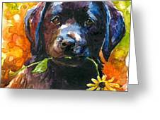 Just Picked Greeting Card by Molly Poole