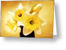 Just Plain Daffy 1 - Flora - Spring - Daffodil - Narcissus - Jonquil Greeting Card by Andee Design