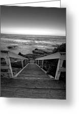 Just Steps To The Sea    Black And White Greeting Card by Peter Tellone