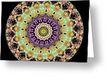 Kaleidoscope Ernst Haeckl Inspired Sea Life Series Greeting Card by Amy Cicconi