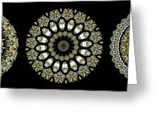 Kaleidoscope Ernst Haeckl Sea Life Series Steampunk Feel Triptyc Greeting Card by Amy Cicconi