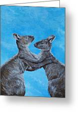 Kangaroo Island Kangaroos Greeting Card by Margaret Saheed