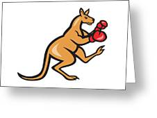 Kangaroo Kick Boxer Boxing Cartoon Greeting Card by Aloysius Patrimonio