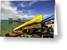 Kayaks Greeting Card by Bruce Bain