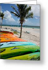 Kayaks On The Beach Greeting Card by Amy Cicconi
