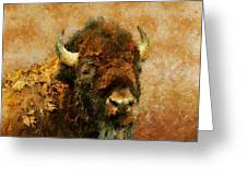King Of The Plains Greeting Card by Roger D Hale