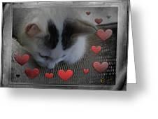 Kissing Again Greeting Card by Ernestine Manowarda