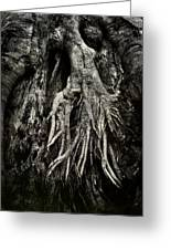 Kneeling At The Feet Of The Green Man Greeting Card by Rebecca Sherman