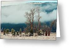 Kootenai Frost Greeting Card by Annie Pflueger