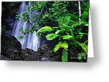 La Coca Falls Greeting Card by Thomas R Fletcher