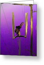 La Loupiote In Lavender Greeting Card by Anne Mott