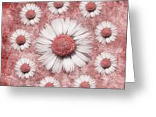 La Ronde Des Marguerites - Pink 02 Greeting Card by Variance Collections