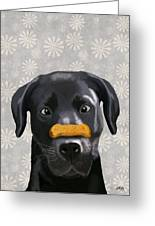 Labrador Black With Bone On Nose Greeting Card by Kelly McLaughlan