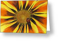 Lady Bug Greeting Card by Nan Wright