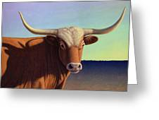 Lady Longhorn Greeting Card by James W Johnson