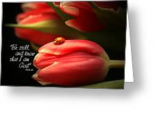 Ladybug And Tulip Greeting Card by Linda Fowler