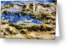 Laguna Beach Tide Pool Pattern 3 Greeting Card by Scott Campbell