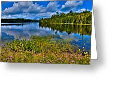 Lake Abanakee At Indian Lake New York Greeting Card by David Patterson