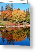 Lake At Davis Greeting Card by Jim Halas