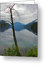 Lake Crescent - Washington - 01 Greeting Card by Gregory Dyer