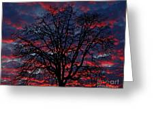 Lake Oswego Sunset Greeting Card by Nick  Boren