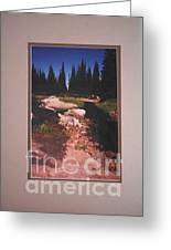 Lake Rivette Runoff Greeting Card by Sharon Elliott