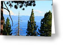 Lake Tahoe Tranquil Greeting Card by Saya Studios