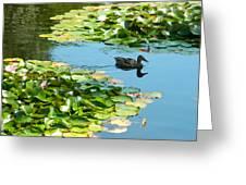 Lake View Greeting Card by Gunter  Hortz