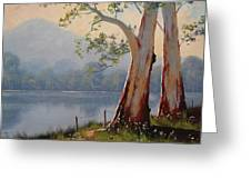 Lakeside Gums Greeting Card by Graham Gercken