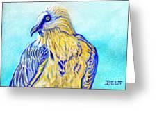Lammergeier Vulture Greeting Card by Christine Belt
