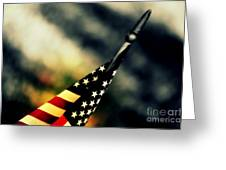 Land Of The Free - 2 Greeting Card by Susanne Van Hulst