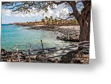 Lapakahi 3 Greeting Card by Al Andersen