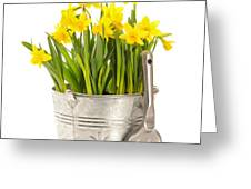 Large Bucket Of Daffodils Greeting Card by Amanda And Christopher Elwell