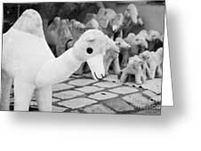 Large Soft Toy Stuffed Camel Souvenir At Market Stall In Nabeul Tunisia Greeting Card by Joe Fox