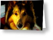 Lassie Come Home Greeting Card by Karen Wiles