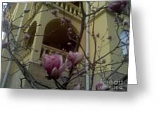 Last Artefact Sochi Spring Greeting Card by Vale Tek