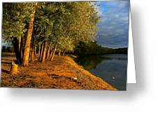 Late Evening on White River Greeting Card by Julie Dant