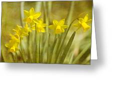 Laughing Dafs Greeting Card by Rebecca Cozart