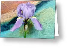 Lavendar Iris Greeting Card by Marsha Heiken