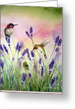 Lavender And Hummingbirds Greeting Card by Patricia Pushaw