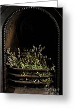 Lavender Fire Greeting Card by Anne Gilbert