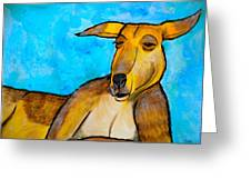 Lazy Roo Greeting Card by Debi Starr
