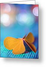 Le Papillon - The Butterfly - 21 Greeting Card by Variance Collections