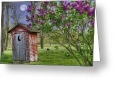 Leaning Outhouse Greeting Card by David Simons